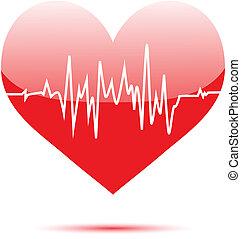 Cardiogram on heart