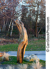 Old dry logs. - Photo of  old dry logs at sunset.