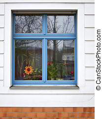 Old house blue window and flower
