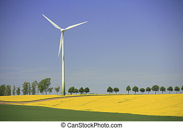 Wind turbine in a blooming canola field in Saxony, Germany