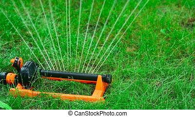 Irrigation.