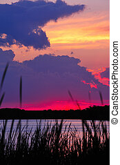 Cattail Sunset at Chester Creek, Wisconsin