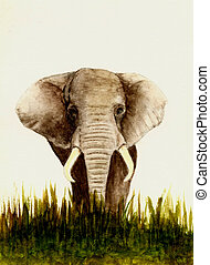 Elephant (Front View) - Watercolor Painting of an African...
