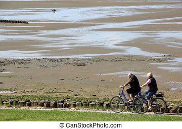 Cycleway at the Wadden Sea on the Island of Sylt - The...