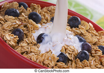 Bowl of Granola and Boysenberries and Milk - Milk being...