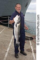 Large Seabass - A fisherman with a rod caught specimen...