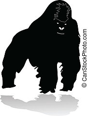 Gorilla - gorilla vector illustration