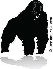 Gorilla - gorilla vector illustration