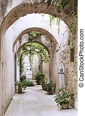 Old arcade at the Castle - Old arcade, corridor and flowers...