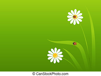 background with a ladybug