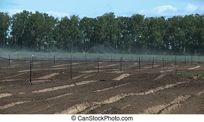 Irrigation system on farm - Agricultural irrigation system