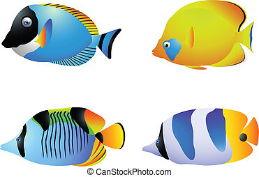 Tropical fish collection - vector illustration of Tropical...
