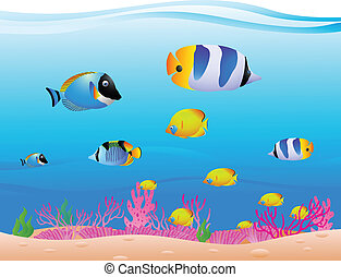 Tropical Fish - vector illustration of Tropical Fish