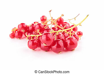 isolated redcurrant