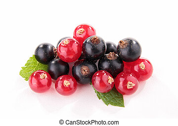 isolated blackcurrant and redcurrant