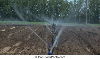 Irrigation Agricultural system on farm