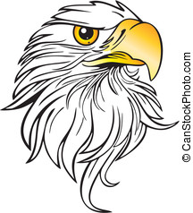 Eagle Illustration - Vector Illustration of an Eagle Head