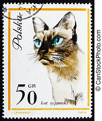Postage stamp Poland 1963 Siamese Cat