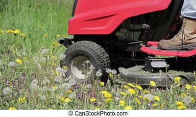 Ride-on Lawnmower - Ride-on lawnmower cutting dandelions.