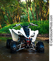 ATV in water - ATV Yamaha Raptor 350 parked in water