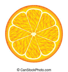 orange fruit isolated over white background vector...