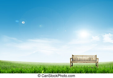 chair on green field on a sunny day