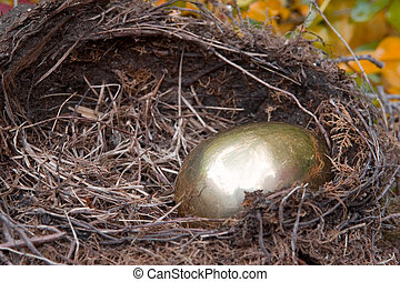 Golden Nest Egg - A golden egg in the birds nest