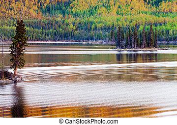 ocaso, reflexiones, boreal, bosque, lago, Yukon