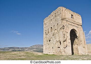 Marinid tombs at Fez, Morocco - Marinid tombs ruins at Fez,...