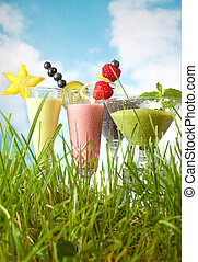Fruit smoothies in the garden