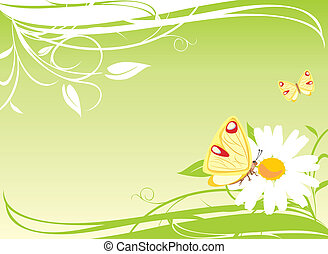 Chamomile and butterflies on the floral background. Vector...