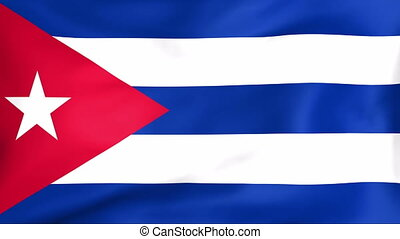 Flag Of Cuba - Developing the flag of Cuba