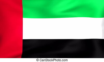 Flag Of United Arab Emirates - Developing the flag of United...