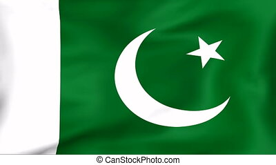 Flag Of Pakistan - Developing the flag of Pakistan
