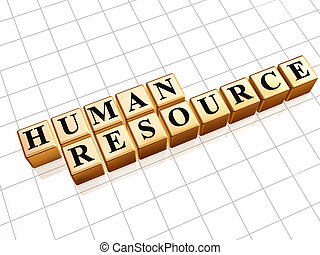 Human resource 3d golden boxes with text