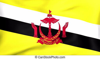 Flag Of Brunei - Developing the flag of Brunei