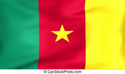 Flag Of Cameroon - Developing the flag of Cameroon