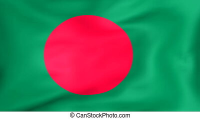 Flag Of Bangladesh - Developing the flag of Bangladesh