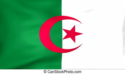 Flag Of Algeria - Developing the flag of Algeria