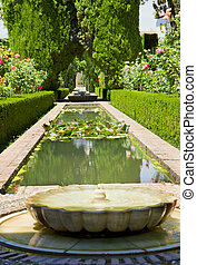 Generalife gardens, Granada, Spain - A fountain in the...