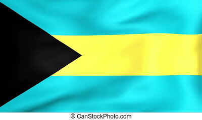 Flag Of Bahamas - Developing the flag of Bahamas