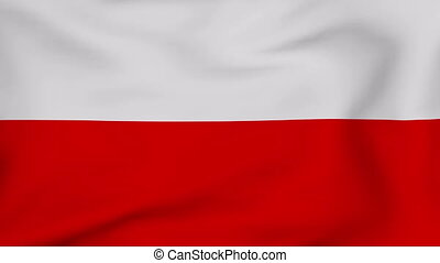 Flag Of Poland - Developing the flag of Poland