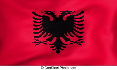 Flag Of Albania - Developing the flag of Albania
