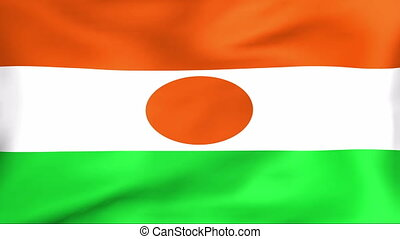 Flag Of Niger - Developing the flag of Niger