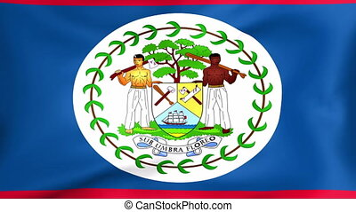 Flag Of Belize - Developing the flag of Belize