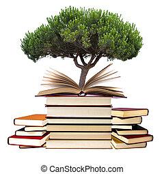 Libros, árbol