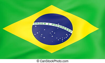 Flag Of Brazil - Developing the flag of Brazil