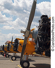 Vintage Propeller Airplanes Lined Up at Airshow
