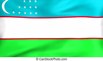 Flag Of Uzbekistan - Developing the flag of Uzbekistan