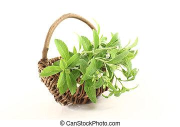 verde,  stevia